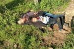 Hai cha con di cư bị cắt cổ, bỏ bên vệ đường ở Mexico gây rúng động