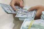 Ngày 28/7: Tỷ giá USD/VND tiếp tục bình lặng