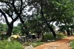 TP.HCM: Nghĩa trang, bãi rác được 'hô biến' thành... khu đô thị hạng sang