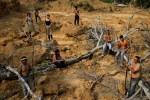 """Thổ dân quyết bảo vệ rừng Amazon """"đến giọt máu cuối cùng"""""""