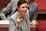 """Thượng nghị sỹ Australia """"hiến kế"""" ngăn chặn hành vi gây hấn của Trung Quốc trên Biển Đông"""