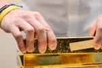 Vàng thế giới chốt tuần giảm 0,6% khi đồng USD mạnh lên