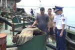 Điều tra nguồn gốc 500.000 lít dầu DO bắt giữ tại biển Bà Rịa - Vũng Tàu