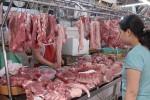 Việt Nam tiêu hủy 5,6 triệu con lợn do dịch tả lợn châu Phi