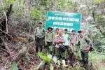 Cán bộ giữ rừng bị hành hung vì từ chối cho xe gỗ qua trạm