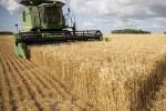 Mỹ - Trung vẫn bất đồng việc mua nông sản