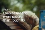 Một nửa màn hình của iPhone 12 sẽ trở thành Touch ID