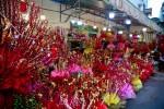 Nụ tầm xuân Trung Quốc trưng Tết hút khách tại TP.HCM