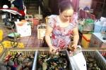 Lại đến mít Thái, cua biển rớt giá, ế thảm