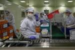 Hàn Quốc chữa khỏi 50% bệnh nhân COVID-19, Trung Quốc không có ca nội địa