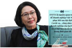 """EVFTA: Nhiều vấn đề cần cải thiện nếu muốn đón """"đại bàng"""""""