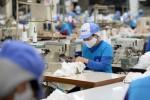 Dệt may hưởng lợi từ EVFTA: Nút thắt lớn là vùng nguyên liệu