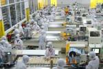 Sản lượng, số lượng đơn hàng và niềm tin kinh doanh của Việt Nam bật tăng