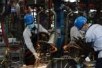 IMF: GDP Việt Nam năm 2020 vượt Singapore