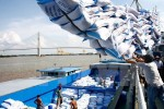 Không phải Ấn Độ hay Thái Lan, Bangladesh đã chọn Việt Nam để nhập mua 50.000 tấn gạo đầu tiên theo hợp đồng G2G