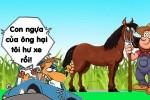 Ngựa không rành về xe hơi