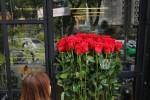 Hoa hồng giá nửa triệu cao hơn người cháy hàng dịp Valentine