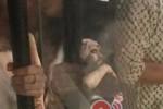 Đạo diễn Kong nằm viện, hủy lịch trình quảng bá du lịch Việt Nam