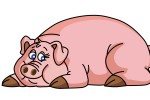 Lợn không cần tiết kiệm thời gian