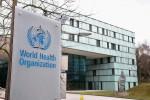 Hàng ngàn thư điện tử của WHO, Viện Y tế quốc gia Mỹ, Quỹ Gates bị lộ?