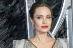 Angelina Jolie ủng hộ chống phân biệt chủng tộc